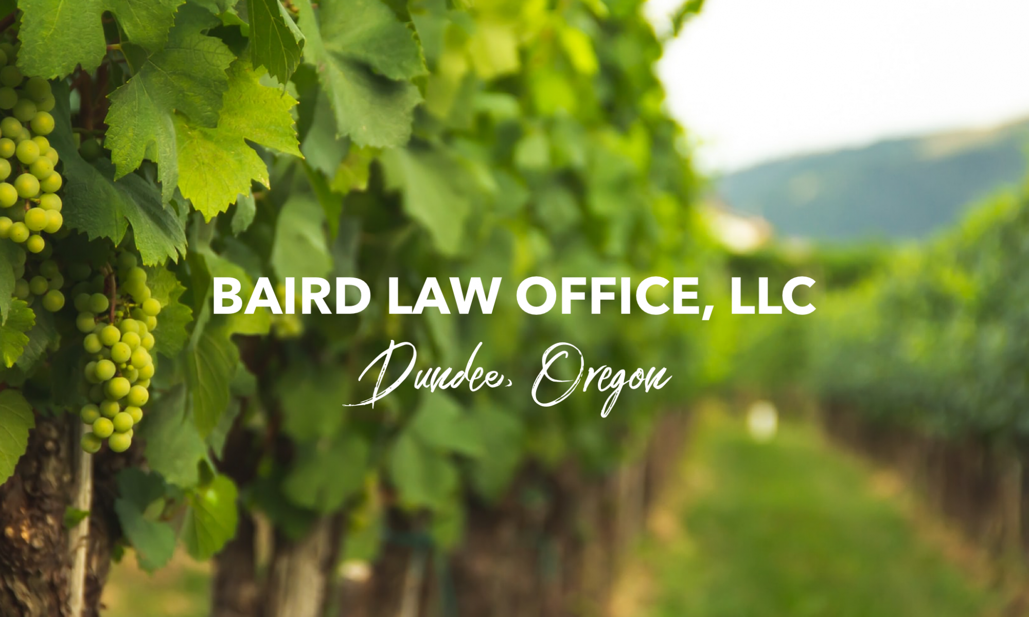 Baird Law Office, LLC